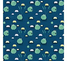 Cute frogs Photographic Print