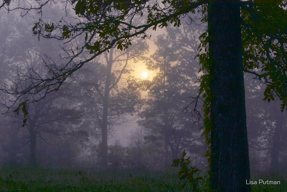 First Light by Lisa G. Putman