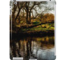 Fallen tree by the river iPad Case/Skin