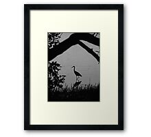 Stalk Reflections Framed Print