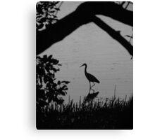 Stalk Reflections Canvas Print