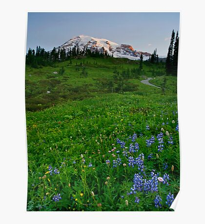 Mountain Dawn Poster