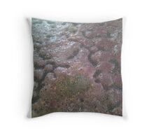 Ceramic Happenstance Throw Pillow