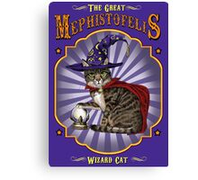 The great wizard cat Canvas Print