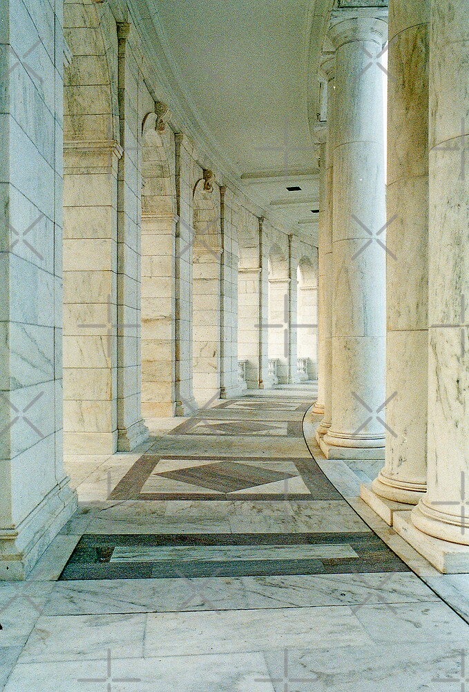Jefferson Memorial 3 by Catherine Hamilton-Veal  ©