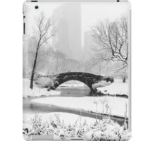 Classic New York City iPad Case/Skin