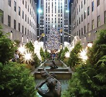 The Square Garden by KensLensDesigns