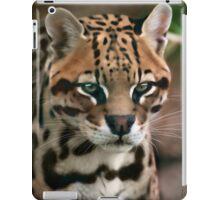 Lancelot iPad Case/Skin