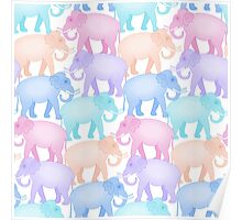 Multicolored Indian Elephant Pattern Poster