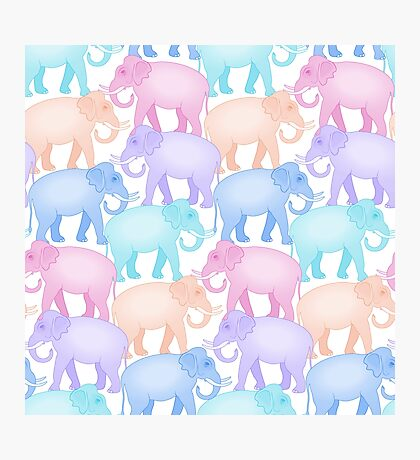 Multicolored Indian Elephant Pattern Photographic Print