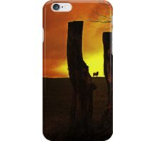 ONE LAST LOOK iPhone Case/Skin