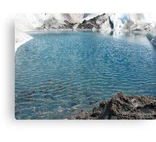 Viedma Glacier Canvas Print