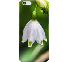 White flower in a Kent garden iPhone Case/Skin