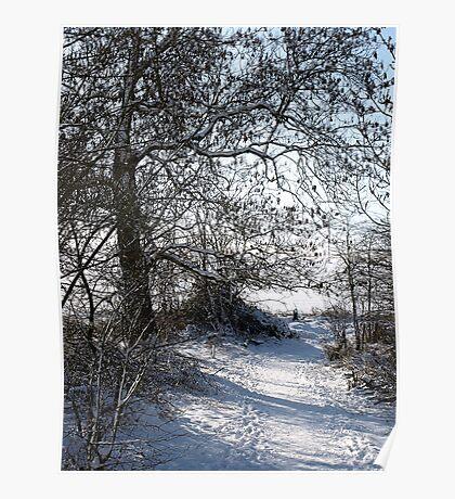 Snow Scene 1 Poster