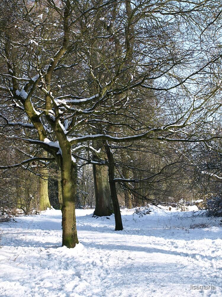 Snow Scene 2 by lisamaria