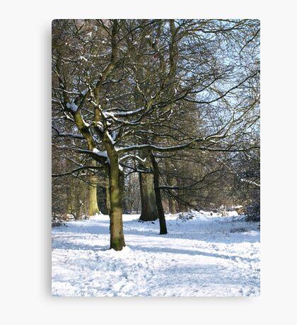 Snow Scene 2 Canvas Print
