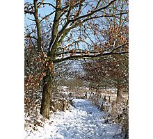 Snow Scene 3 Photographic Print