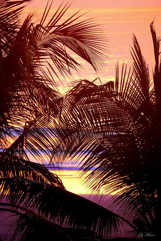 Palm Patterns by LjMaxx
