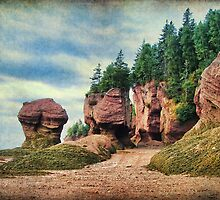 Hopewell Rocks, New Brunswick by Amanda White