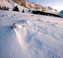 Snowy Aerodynamics by Sylvain Girard