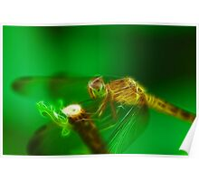 Electric Dragonfly Poster