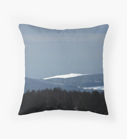 Geese over Gladhouse Throw Pillow