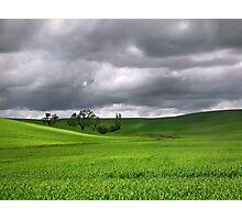 Palouse Oasis Photographic Print