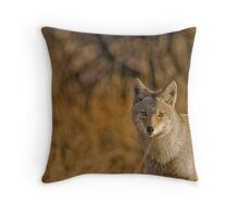 TCP Close-Up Throw Pillow