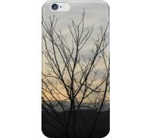The bitter sunset iPhone Case/Skin