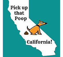 Dog poop by state - California Photographic Print