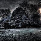 Dark Snow by Greg Roberts
