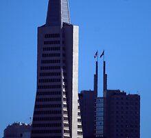 The Transamerica Building by photoclimber
