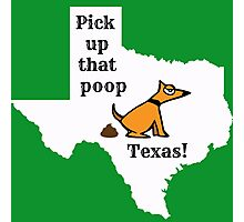 Dog poop by state - Texas Photographic Print