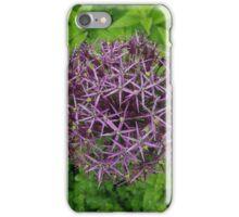 Natural Geometry  iPhone Case/Skin