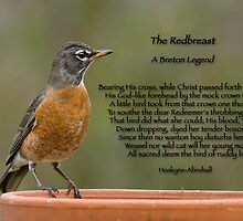 Redbreast, A Breton Legend by Bonnie T.  Barry