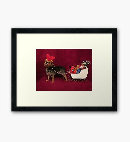 Dog with antlers & sleigh Framed Print