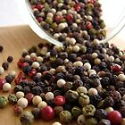 Peppercorns by Caroline Fournier