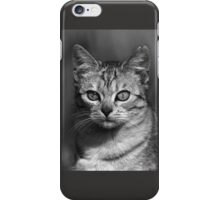 """Chat - Cat """" Peluche """" 04 (c)(h) ) by Olao-Olavia / Okaio Créations 300mm f.2.8 canon eos 5 1989    iPhone Case/Skin"""