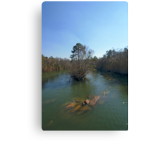 downstream Canvas Print