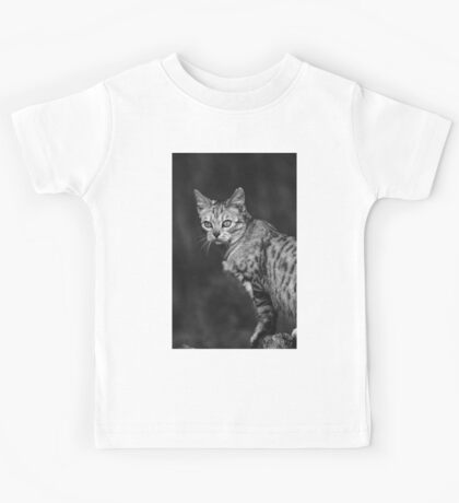 """Chat - Cat """" Peluche """" 05 (c)(h) ) by Olao-Olavia / Okaio Créations 300mm f.2.8 canon eos 5 1989 Kids Tee"""