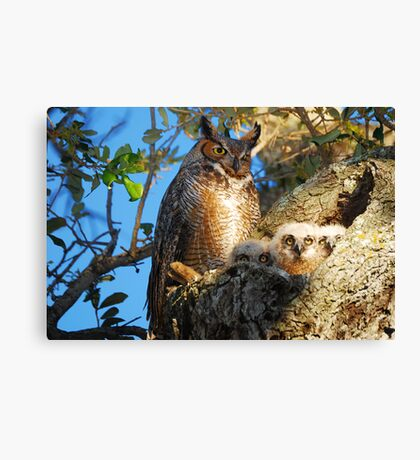 The Way God Intended it to Be Canvas Print