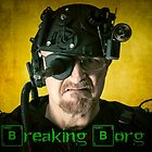 Breaking Borg by Randy Turnbow