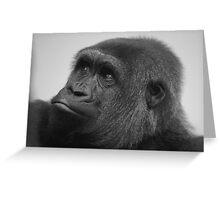 Female West Lowland Gorilla Greeting Card
