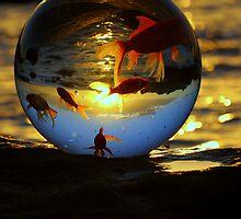 """ The World according to Goldfish "" by helmutk"