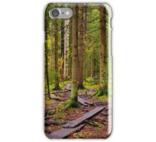 Planks iPhone Case/Skin