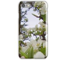 Apple blossoms iPhone Case/Skin