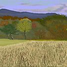 Hill Country Colors by Carole Boyd