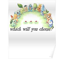 which will you choose? Poster