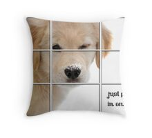 Chilly Dog Throw Pillow