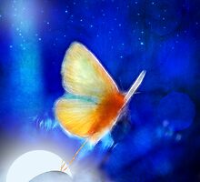 the giant butterfly and the moon by Aimelle